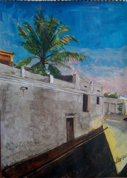 Dusk on the Wall of Fort Saint Diego